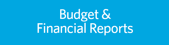 Find financial reports on the UBC Finance website